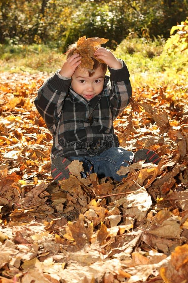Menino do outono foto de stock