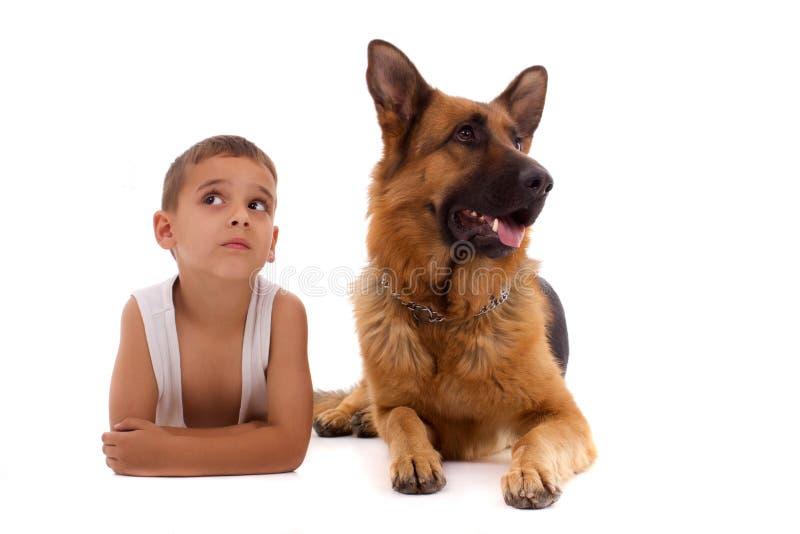 Menino e cão foto de stock royalty free