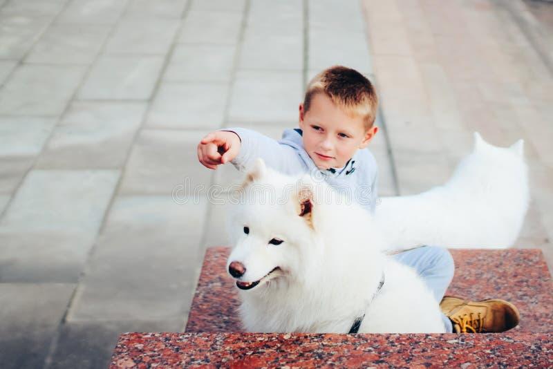 Menino e cão fotos de stock royalty free