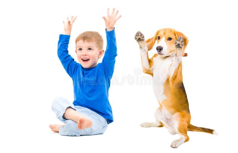 Menino e cão alegres foto de stock royalty free