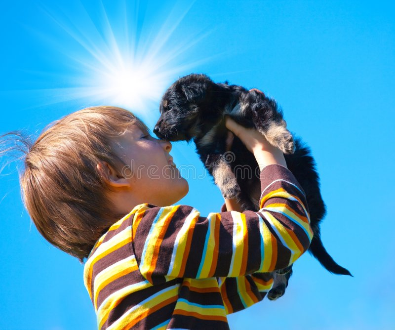 Menino e filhote de cachorro imagens de stock