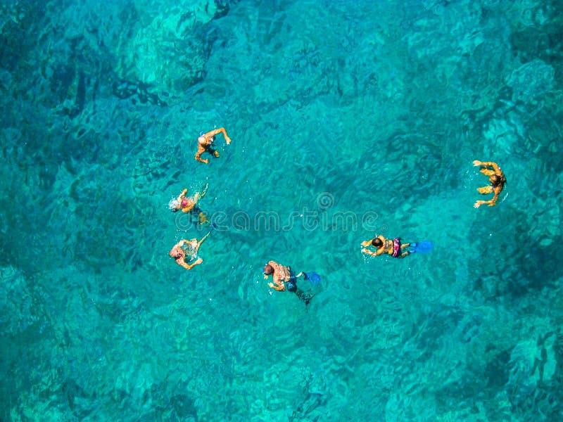 Menino e meninas que sentam-se na mesa surfando e no olhar no mar azul