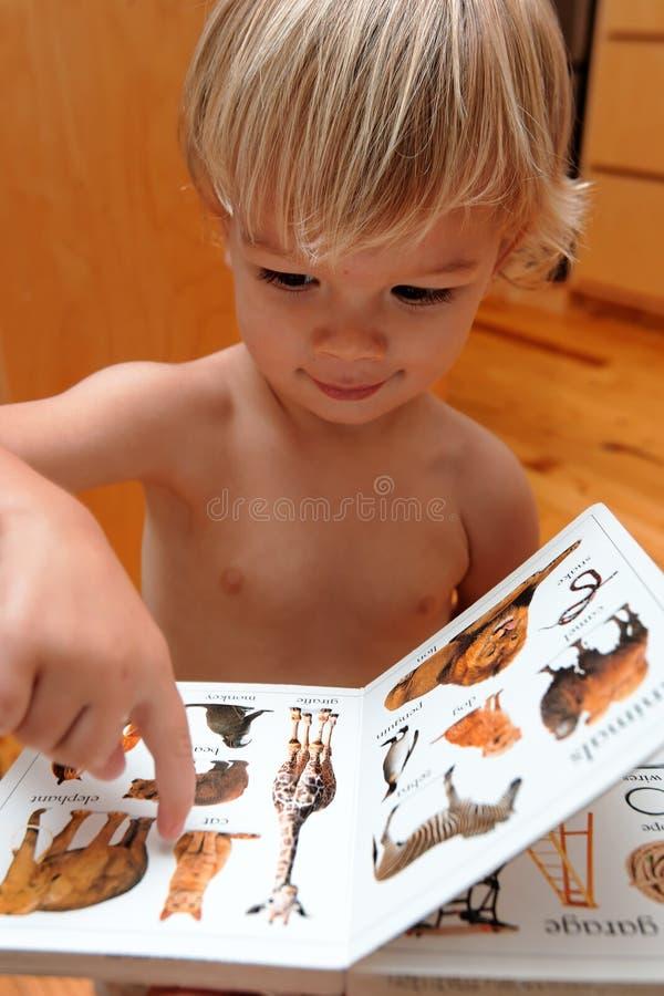 Menino e seu livro fotos de stock