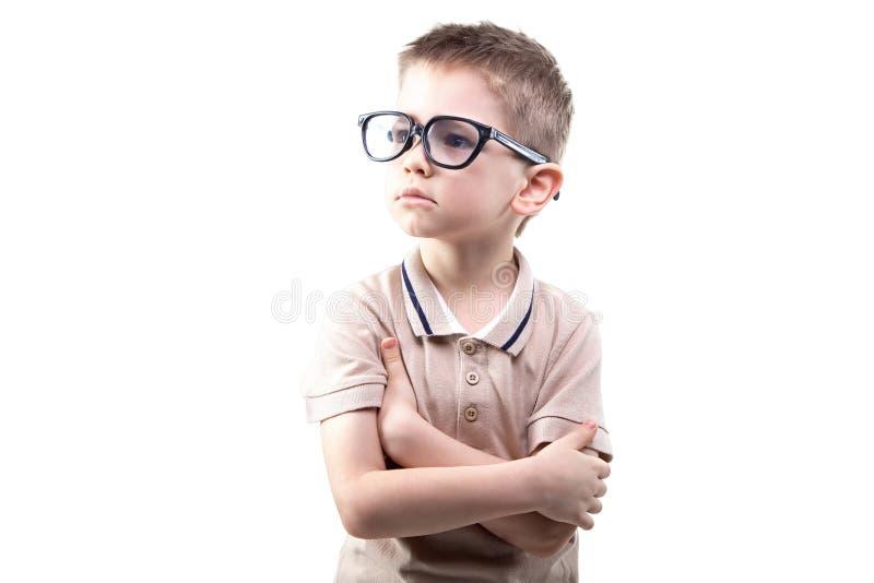 Menino educado pequeno nos vidros foto de stock royalty free