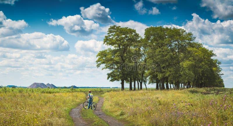 Menino em uma bicicleta em um campo do verão para apreciar o vale imagens de stock
