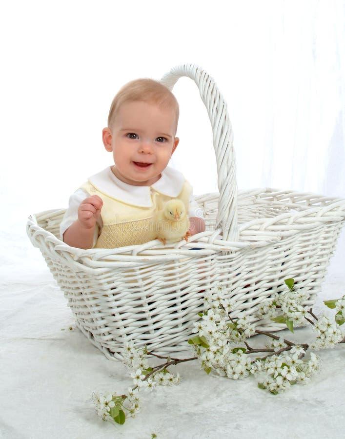 Menino em uma cesta imagem de stock