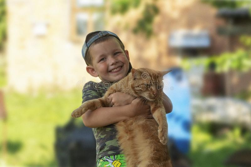 Menino engraçado que abraça um gato com lotes do amor Retrato da criança que guarda sobre as mãos um gato grande Jogo com um gato imagens de stock royalty free