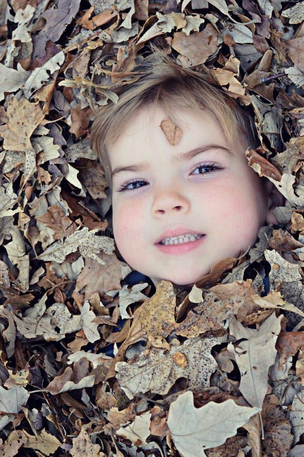 Menino enterrado nas folhas fotos de stock