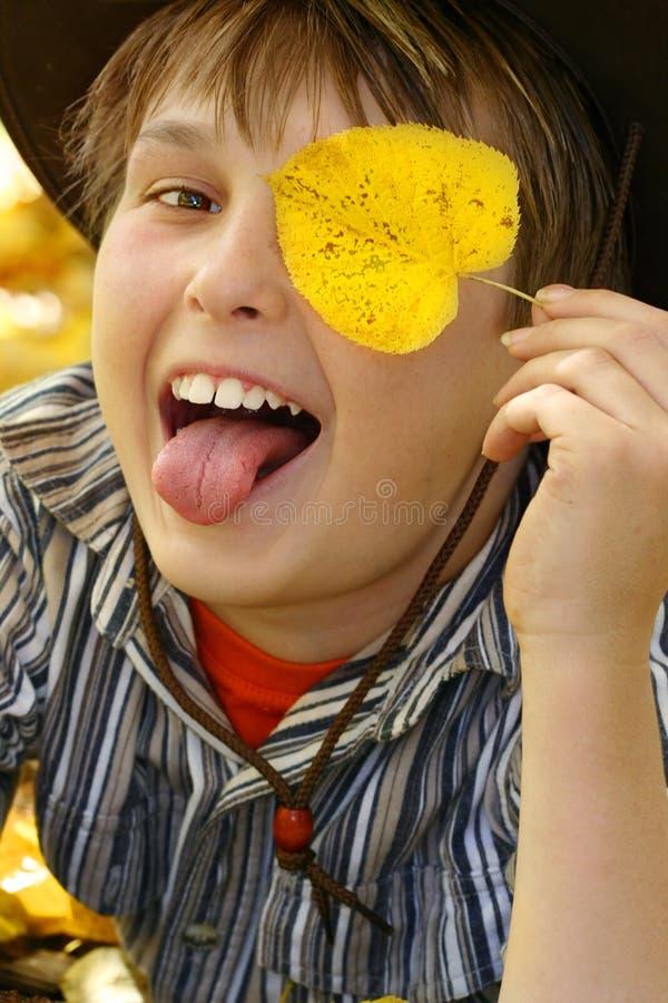 Menino feliz na queda do outono imagens de stock