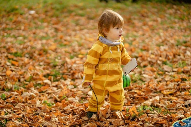 Menino feliz que ri e que joga com o smartphone da mãe no outono no parque imagem de stock