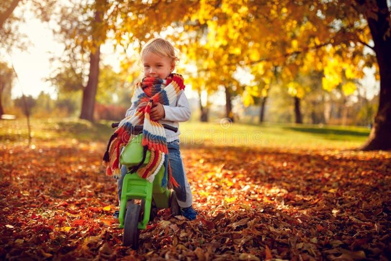 Menino feliz que tem o divertimento em bicicletas no parque do outono fotos de stock royalty free