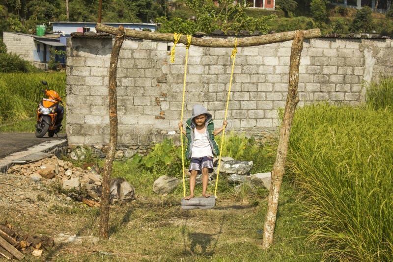 Menino indiano que balança em um balanço em uma área rural perto dos campos verdes do arroz imagem de stock royalty free