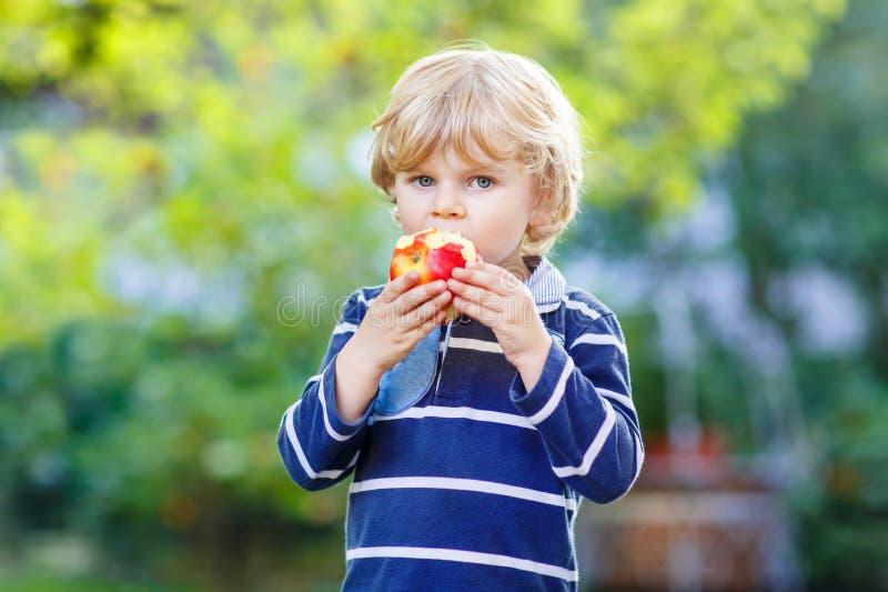 Menino louro engraçado da criança que come a maçã saudável imagem de stock royalty free
