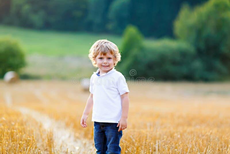 Menino louro feliz da criança que aprecia o por do sol no campo de trigo foto de stock royalty free
