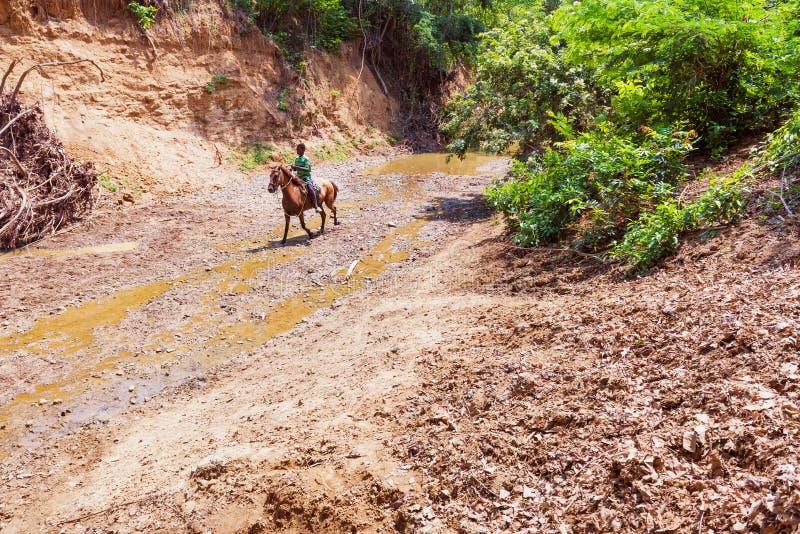 Menino na equitação na parte inferior do rio secado em Palenque imagens de stock