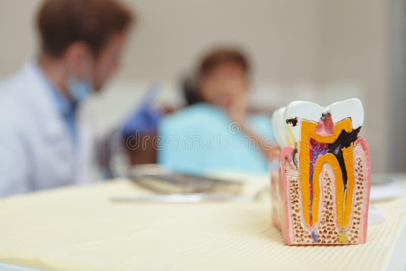 Menino novo de encantamento que obtém o controle dos dentes no dentista foto de stock royalty free