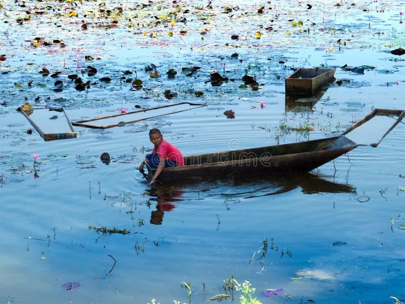 Menino novo em um barco que arranca a flor de Lotus para turistas foto de stock royalty free