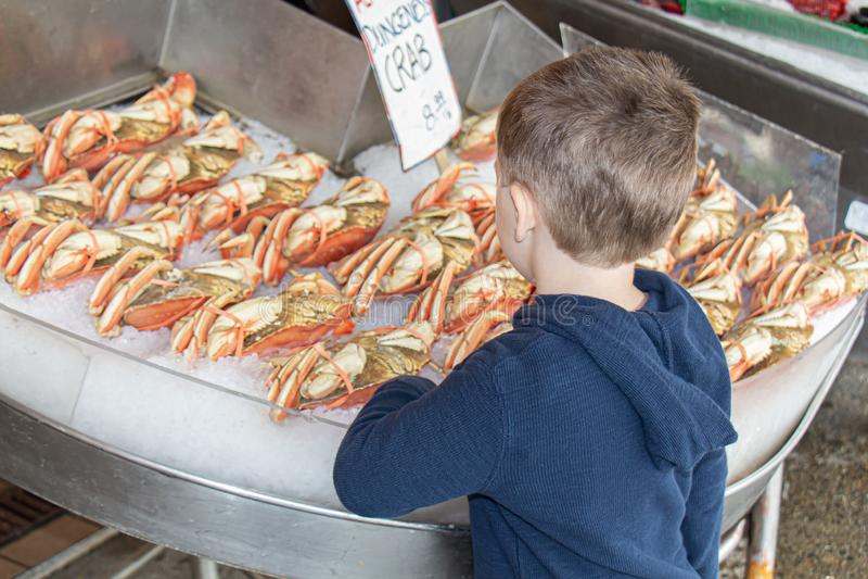 Menino novo em um mercado de peixes fotografia de stock royalty free
