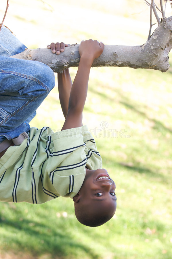 Menino novo em uma árvore foto de stock