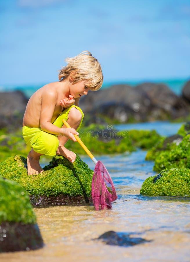 Menino novo feliz que tem o divertimento na praia, jogando com pesca do ne foto de stock royalty free