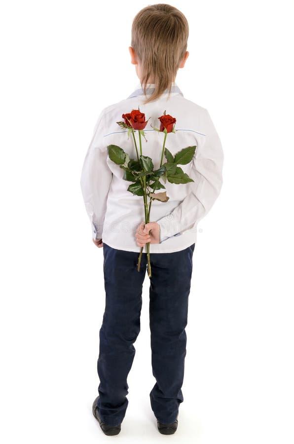 Menino novo guardando rosas atrás para trás fotografia de stock