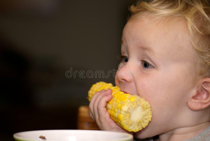 Menino novo que come a espiga de milho imagem de stock