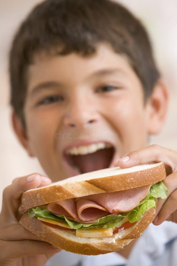 Menino novo que come o sanduíche fotos de stock royalty free