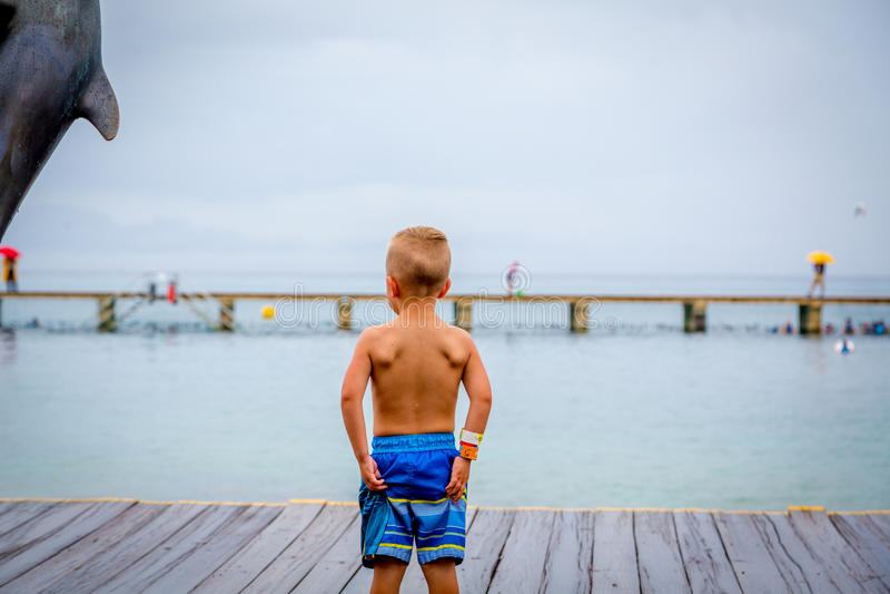 Menino novo que está em um cais que olha o oceano por uma estátua do golfinho imagem de stock royalty free