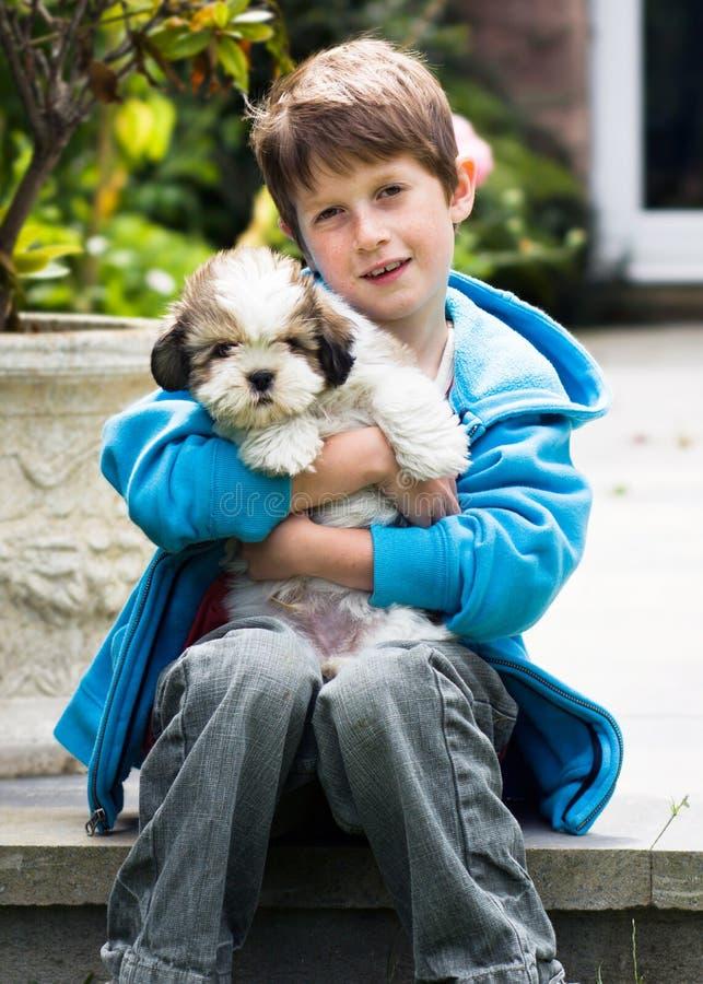 Menino novo que prende um filhote de cachorro do apso de lhasa foto de stock royalty free