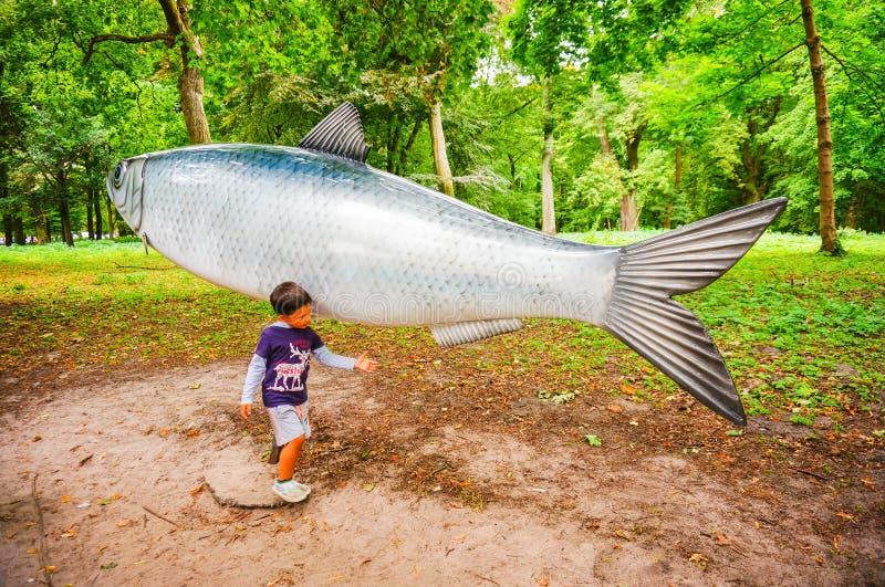Menino pelos peixes modelo imagens de stock royalty free