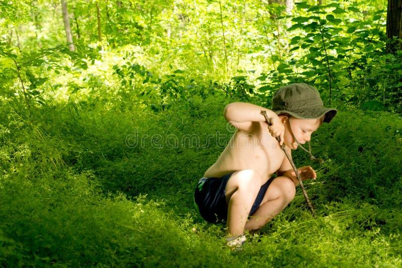 Menino pequeno brincalhão que descobre a natureza fotos de stock