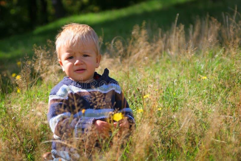 Menino pequeno entre a grama fotos de stock