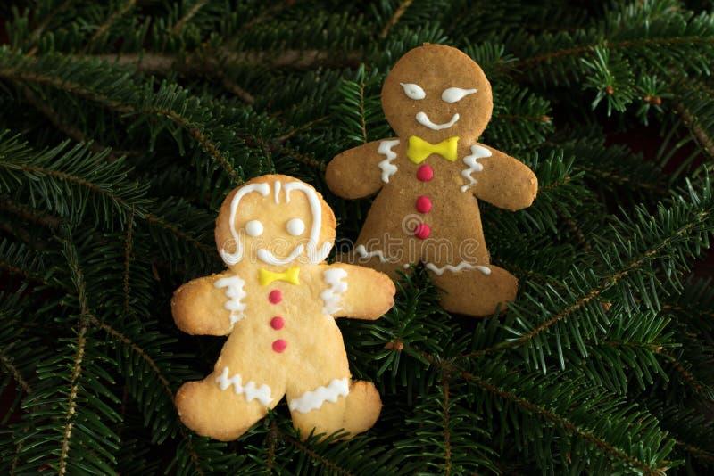 Menino preto do pão-de-espécie e menina branca na árvore de Natal imagem de stock