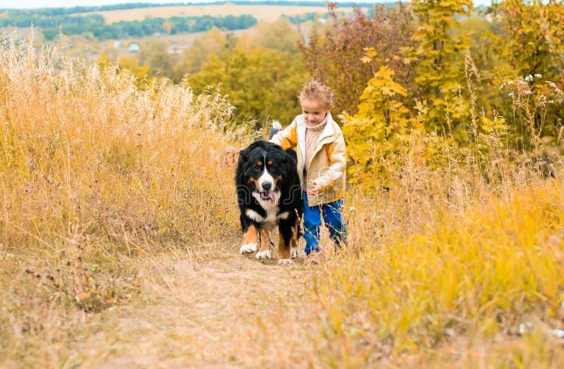 menino que corre ao redor com cão grande fotos de stock royalty free