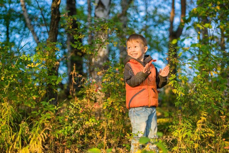 Menino que joga na floresta do outono fotos de stock royalty free