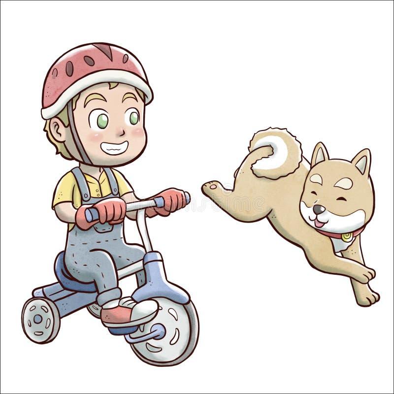 Menino que monta uma bicicleta do triciclo e seguido pelo cão do shiba - fundo branco ilustração do vetor
