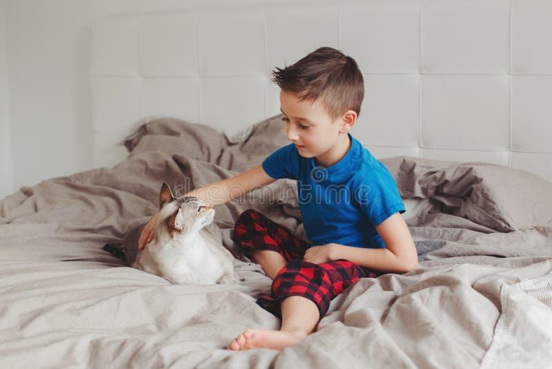 Menino que sentam-se na cama no quarto em casa e trocas de carícias que afagam o gato ponto-colorido oriental imagem de stock royalty free