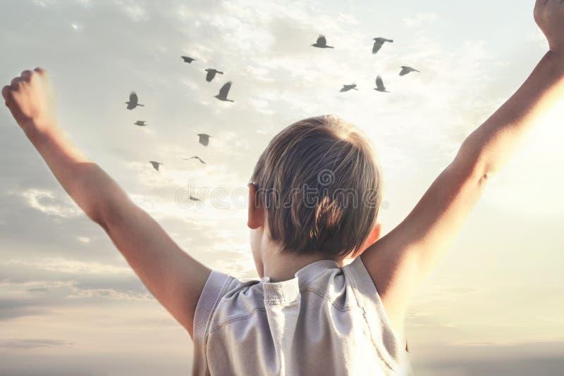 Menino que toma uma respiração com braços abertos na frente de um por do sol maravilhoso fotos de stock royalty free