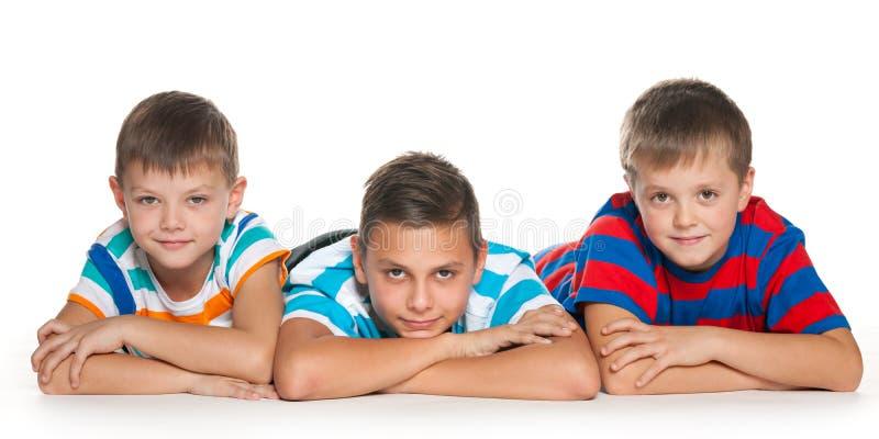 Meninos da árvore no fundo branco imagens de stock