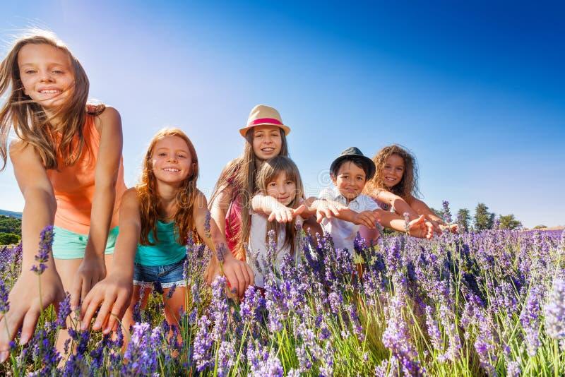 Meninos felizes e meninas que têm o divertimento no campo da alfazema fotografia de stock