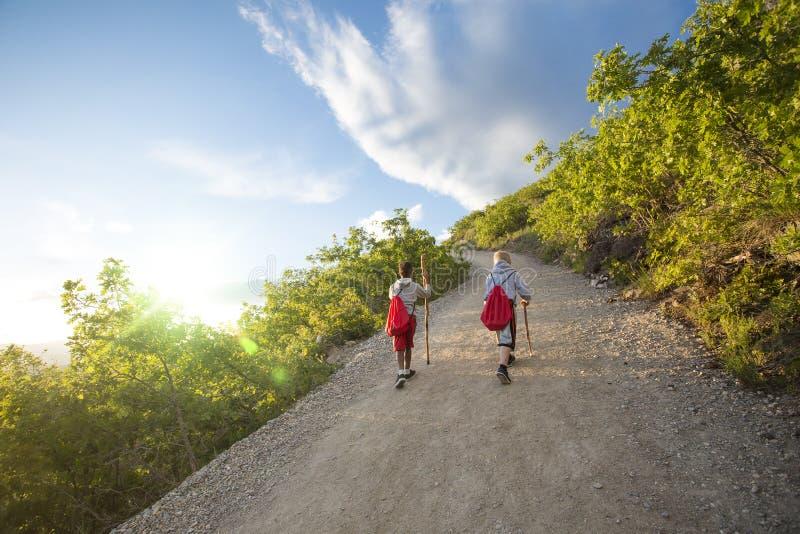 Meninos que caminham acima uma fuga de montanha bonita no verão imagens de stock
