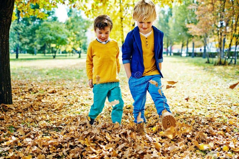 Meninos que jogam com as folhas no parque foto de stock royalty free
