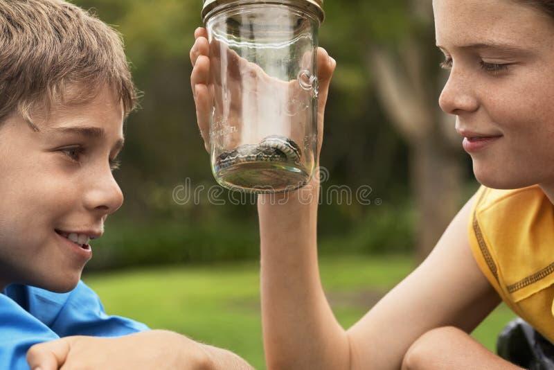 Meninos que olham a serpente no frasco foto de stock royalty free