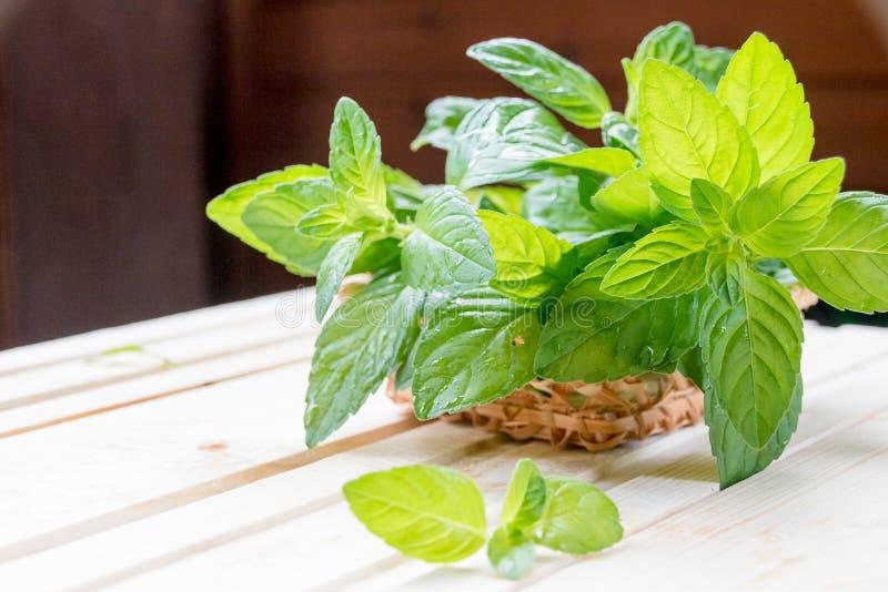 Mennica Wiązka świeży zielony organicznie nowy liść na drewnianym stołowym zbliżeniu Selekcyjna ostrość Miętówka w małym koszu da obraz stock