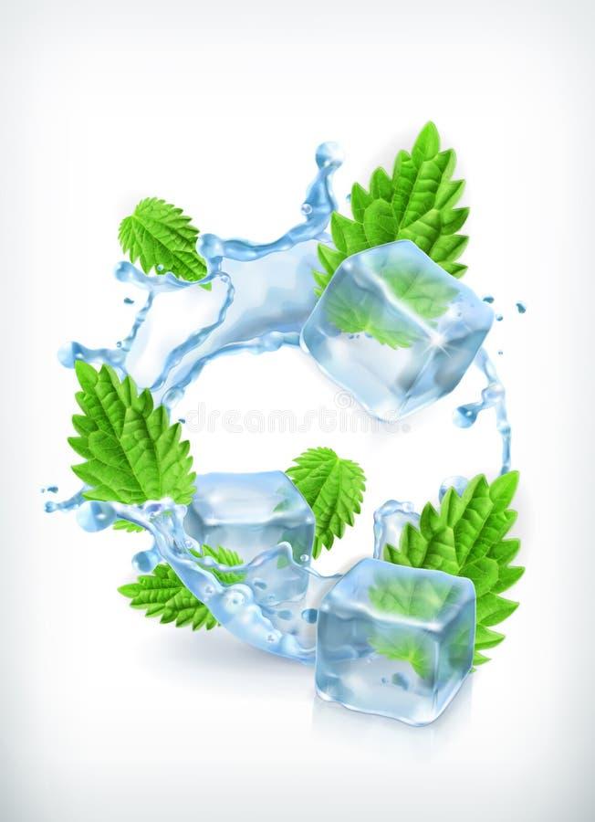 Mennica z kostkami lodu i wody pluśnięciem ilustracji