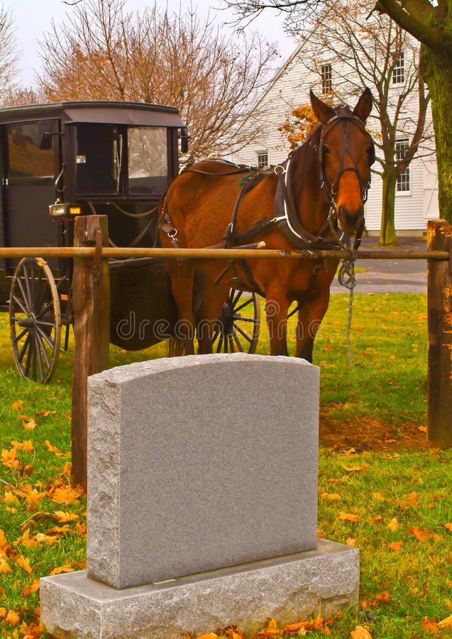 Mennonite powozik i koń zdjęcia royalty free