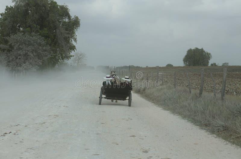Mennonites Belize obraz stock