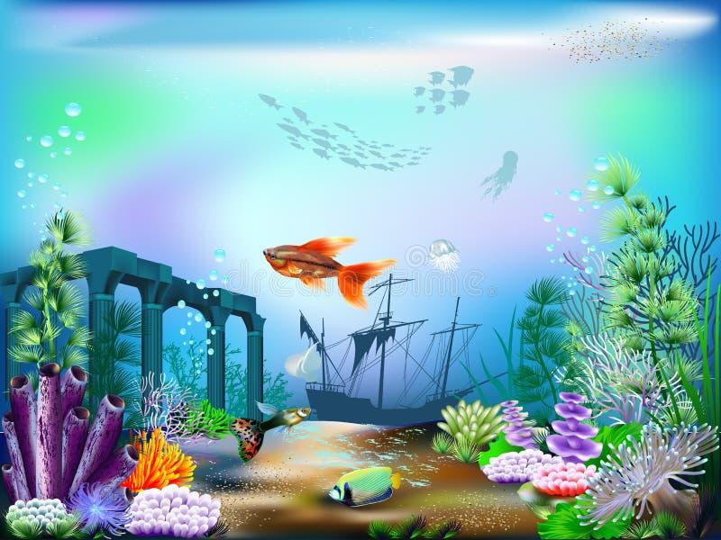 meno νησιών της Ινδονησίας gili lombok κοντά στον υποβρύχιο κόσμο χελωνών θάλασσας απεικόνιση αποθεμάτων