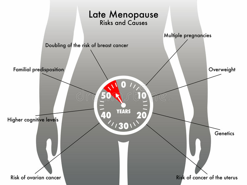 Menopausa atrasada ilustração royalty free