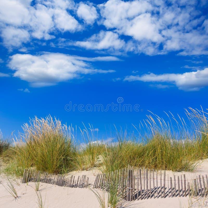 Menorca沙丘的Alaior Cala儿子Bou在拜雷阿尔斯 免版税库存图片